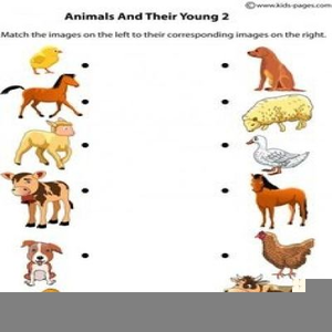 Clipart Images Of Animals And Their Young Ones | Free Images at Clker.com -  vector clip art online, royalty free & public domain
