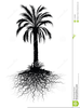Palm Trees Clipart Black And White Image