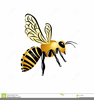 Cartoon Bug Pictures Clipart Image