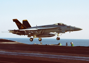 An F/a-18e Assigned To Strike Fighter Squadron One One Five (vfa-115) Image