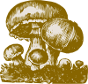 Mushrooms Clip Art