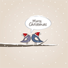 Christmas Birds 1 Image