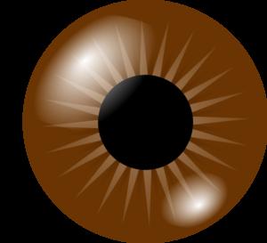 brown eye clip art at clker com vector clip art online royalty rh clker com two brown eyes clipart Blue Eyes Clip Art