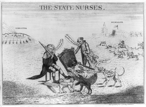 The State Nurses Image
