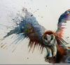 Owl Paintings Watercolor Image