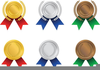 Girl Scout Silver Award Clipart Image