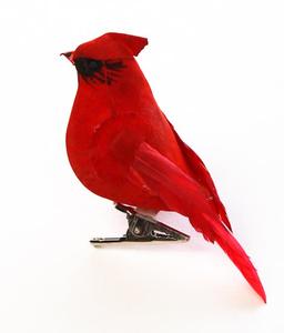 Christmas Cardinals Clipart.Christmas Cardinals Clipart Free Images At Clker Com