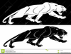 Cougar Clipart Image