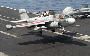 An Ea-6b Prowler Assigned To The  Shadowhawks  Of Electronic Attack Squadron One Forty One (vaq-141) Lands On The Flight Deck Of Uss Theodore Roosevelt (cvn 71). Image