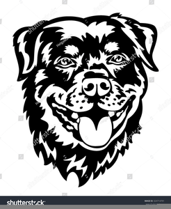 Lion Face Clipart Black And White Image