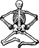 Human Skeleton Clip Art