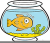 Fish In A Bowl Clipart Image