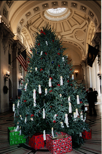 The U.s. Naval Academy S 13th Annual Giving Tree Image