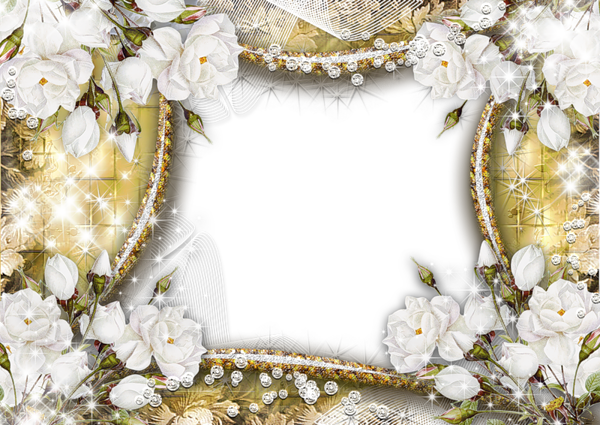 frame flowers rose white transparent image