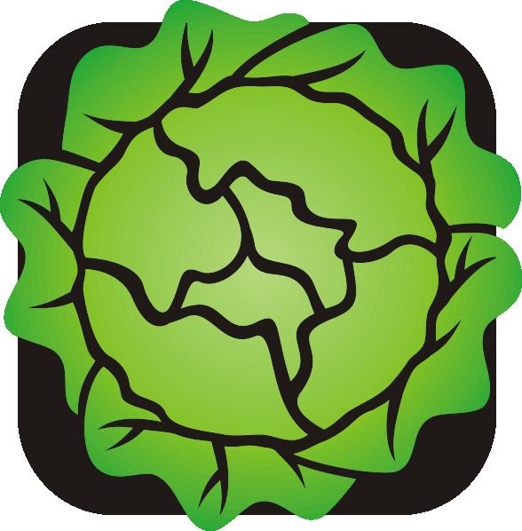 lettuce clip art at clker com vector clip art online royalty free rh clker com lettuce salad clip art lettuce images clipart