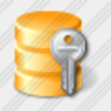 Icon Database Key 3 Image