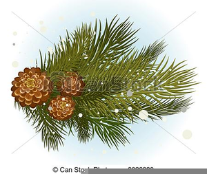 Pine Cone Clipart Black And White Image