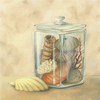Jose Gomez Shells In Jar Image