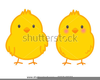 Clipart Duckling Egg From Hatches Image