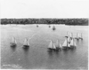 [sailboats Sailing]: Corinth Y[acht] C[lub] Race, Boston, 6 Aug. 1898 Image