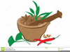 Clipart Of Herbs And Spices Image