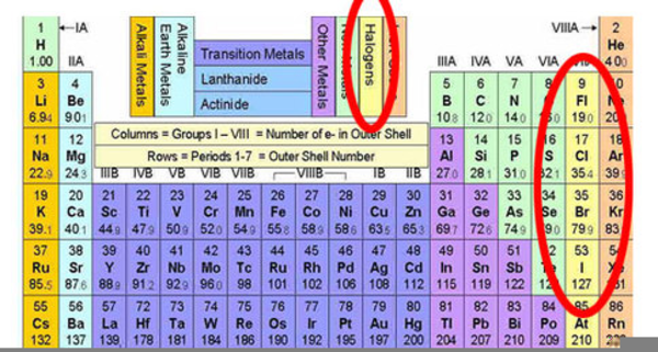 download this image as - Periodic Table Halogens