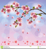 Japanese Cherry Blossom Tree Clipart Image