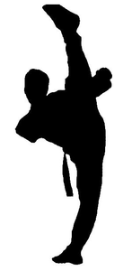 Tkd Shadow Image