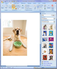 Microsoft Clipart And Photographs Image