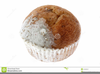Apple Cake Clipart Image