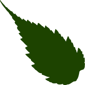 Pointed Leaf Clip Art