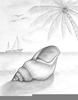 Beach Pencil Drawing Image