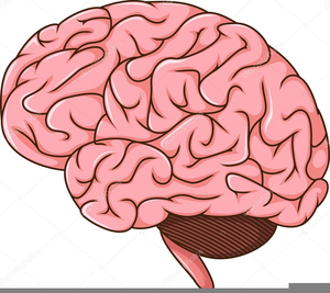 Brain animated. Clipart free images at