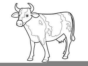 Cow Drawing Outline Image