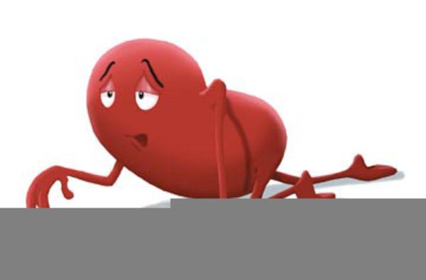 Clipart Kidney Transplant | Free Images at Clker.com ...
