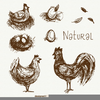 Free Clipart Hens Image