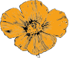 California Poppy Clip Art