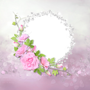 frame rose pink with transparent frame with diamonds image