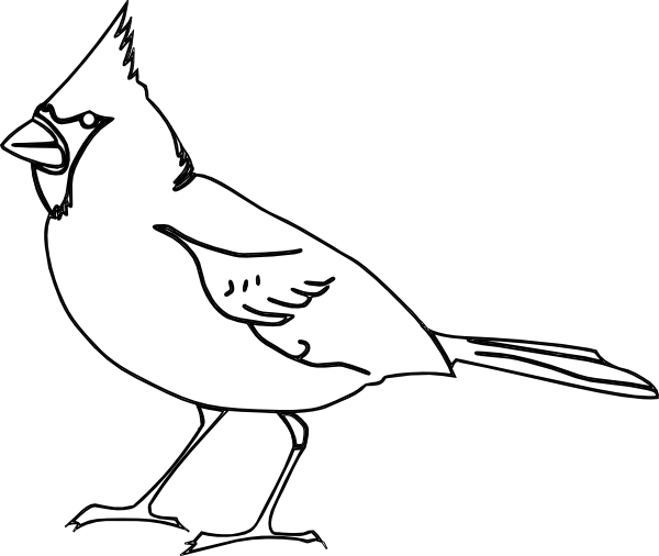 Cardinal Bird Outline Image