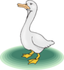 Upset Cartoon Goose Clip Art