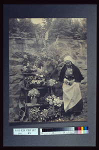 Dutch Flower Seller Image