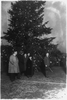 President Coolidge Illuminating The Community Christmas Tree, Which Has Been Erected On The Monument Grounds, South Of The White House Image