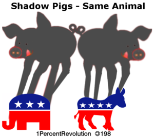 198 Pig Shadow  Image