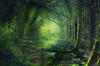 Fairy Forest By Phatpuppyart D Ptggw Image