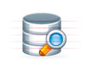 Webpro Database Search Image