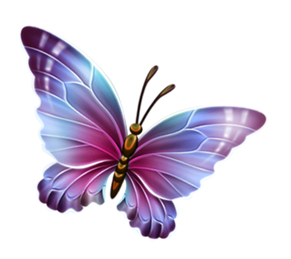 butterfly clipart transparent background wwwimgkidcom