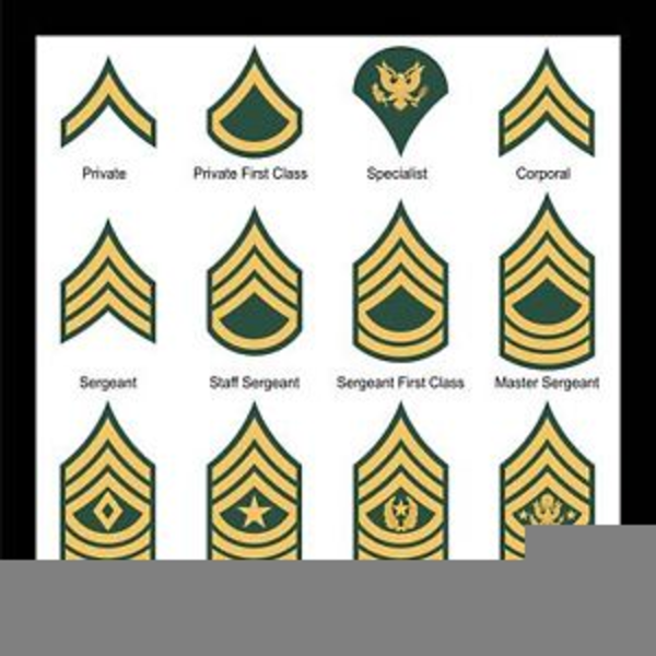 Army Csm Rank Clipart | Free Images at Clker.com - vector ...