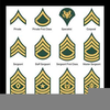 Army Csm Rank Clipart Image