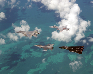 An Air Force F-15  Eagle And F-16  Falcon  Fly In Formation With A Navy F-14  Tomcat  And F/a-18  Hornet  Over The Atlantic Ocean During Exercise Cope Snapper 2002. Image