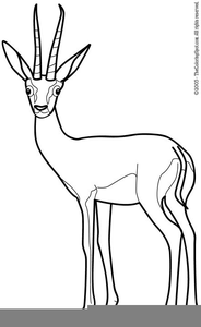 Black And White Animal Clipart For Teachers Image